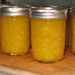 Vidalia Onion Relish