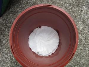 Coffee filters in flower pot