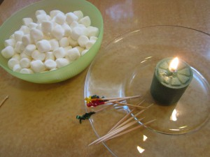 Mini Marshmallow Roast