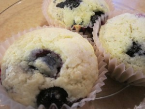 Rich Blueberry Muffins