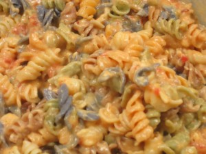 Creamy Tomato Sauce with Cheese on Rainbow Pasta