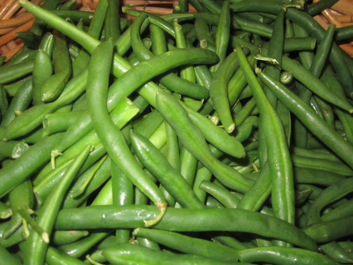 Freezing Green Beans The Charmed Kitchen