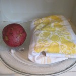 Place in microwave with a potato