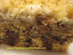 Kahlua Chocolate Squares with Walnuts
