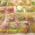 Rainbow Ravioli