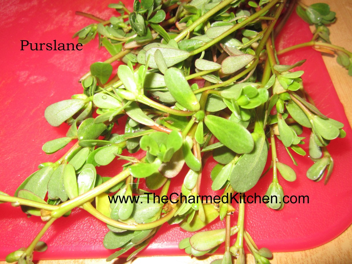 Purslane search results the charmed kitchen for The charmed kitchen
